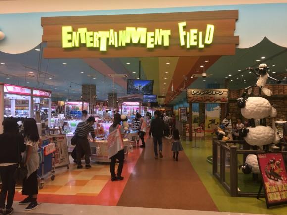 Entertainment field