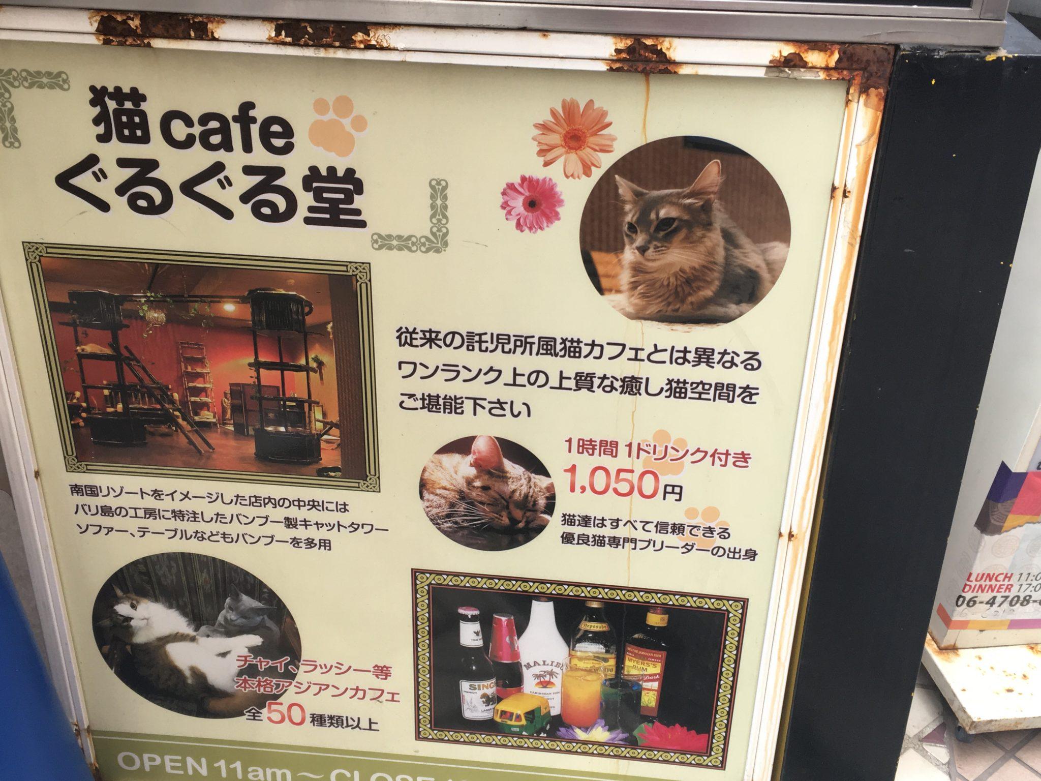 Neko cafe gurugurudo