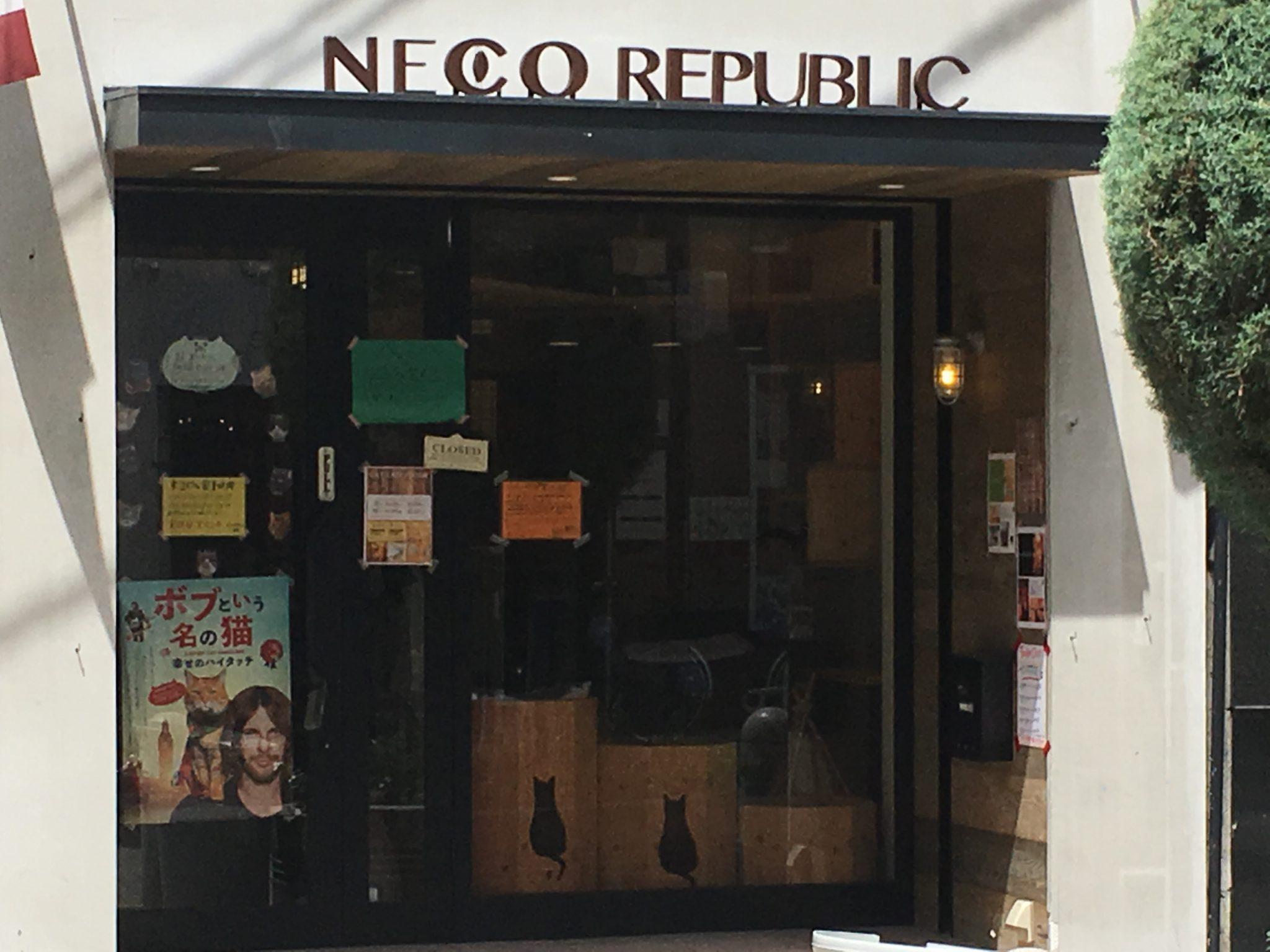Neko cafe republic